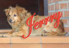 14-12-2012 – Ciao Jerry!!